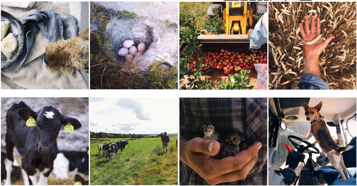 Farming Photography – 3 Instagram accounts to follow
