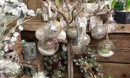 Christmas in Ballymena – Sally's Florist