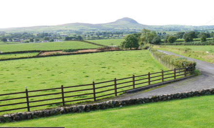 New Home for Sale – Broughshane