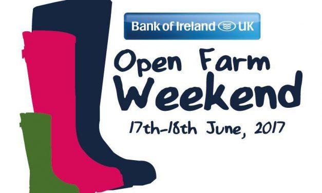 Local Ballymena Farms – Open Farm Weekend