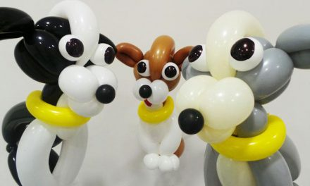 Dogs Trust Recently Launched Their New TV Advert