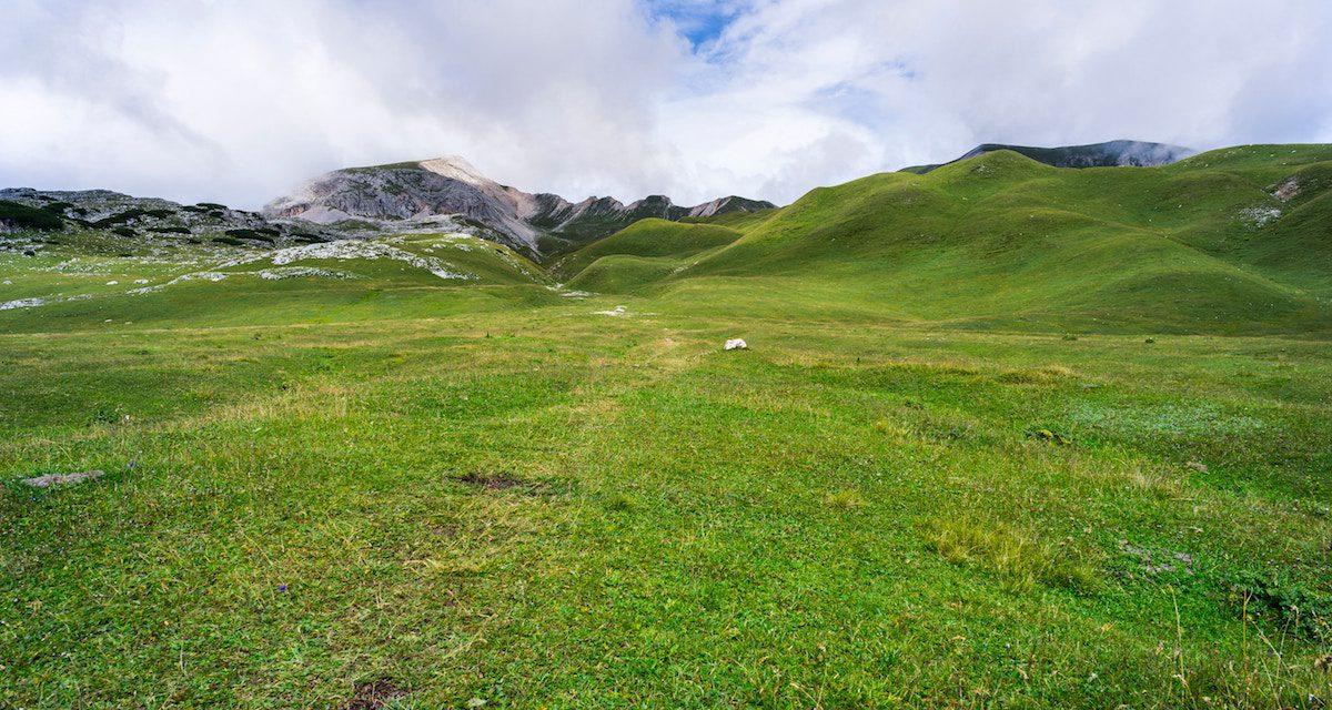 Environmental Farming Scheme Wider Level – Deadline