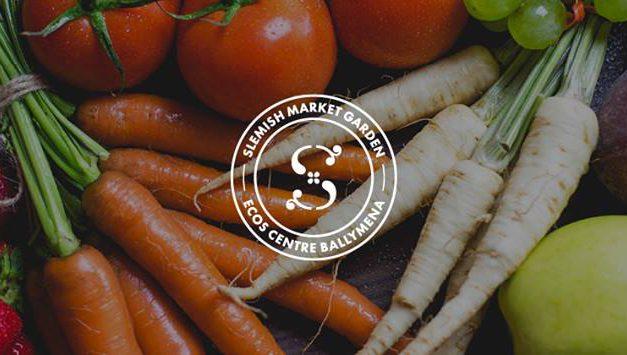 Garlic – Slemish Market Garden Ballymena
