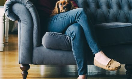 Follow Dogs Trust Ballymena on Instagram