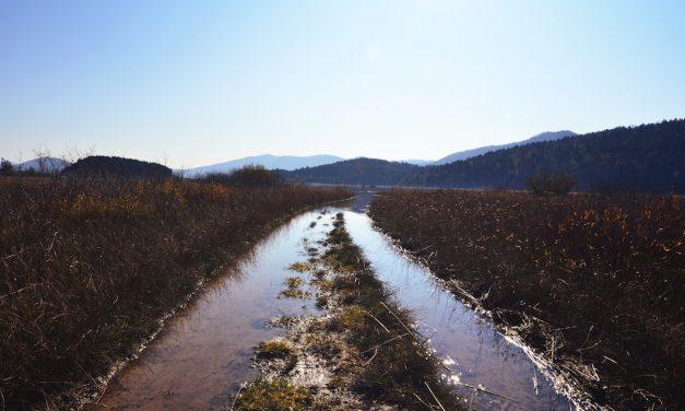 Flood Advice for Farms