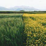 Farming Ballymena – Quad Bike Safety