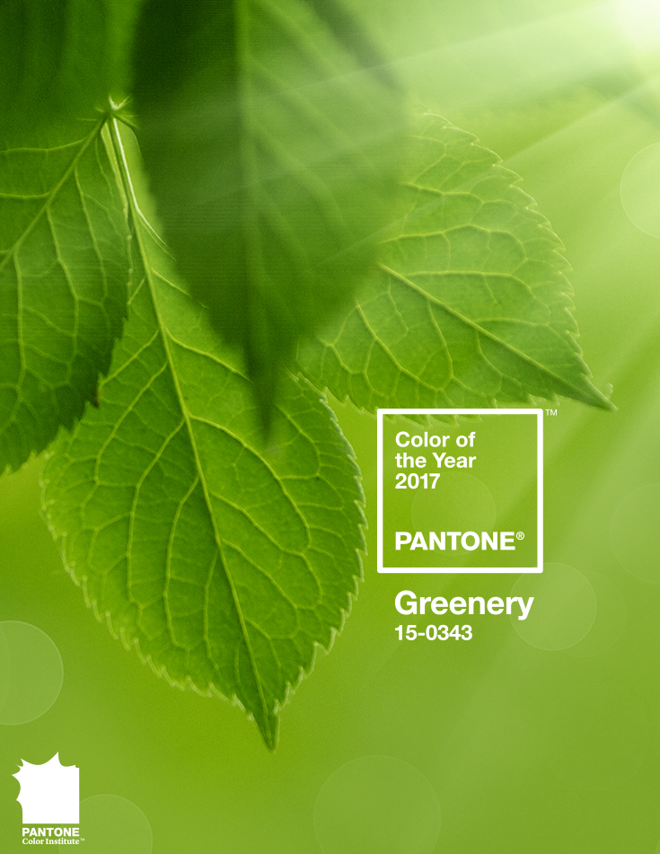 Pantone Colour of the Year | McMillan Interiors